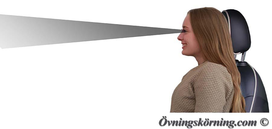 vad innebär att dejta